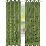 YUAZHOQI - Cortinas personalizadas, diseño de gansos para agricultura, estilo rural, para sala de estar, 52 x 274 cm (2 paneles)