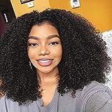 BLISSHAIR 16pulgadas Peluca de cabello humano Rizado rizado Virginal brasileño Remy Onda de agua Peluca corta Sin cola Pelucas delanteras del cordón Afro kinky curly wig