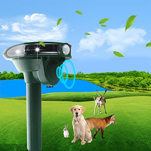 2021, repellente per gatti, a ultrasuoni, con funzionamento solare e flash, contro gatti, cani, martore, animali domestici, spaventatore per gatti, martore, martore e gatti, impermeabile IPX66