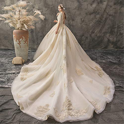 NgMik Elegante Hochzeitskleid Glänzende Brautkleid-Blumenbraut SpitzeApplique Abendkleid Mit V-Ausschnitt-Bügel-Kleider Hochzeit Kittel (Farbe : Champagne, Size : L)