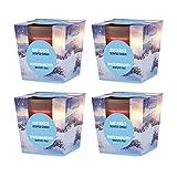 pajoma Duftkerze 4er Set, Wintermärchen, im satinierten Glas, 4x 124 g, Brenndauer: 25 Stunden, in edler Geschenkverpackung -