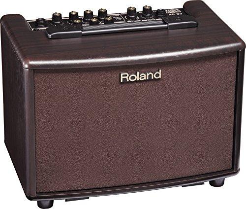Roland AC-33-RW Acoustic Chorus Amplifier, Rosewood