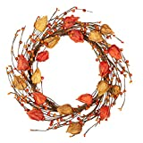 VGIA 16 Inch Fall Wreath Front Door Wreath Autumn WreathFallDecorations with Golden BerriesAutumnDecorations with Cape Gooseberries