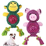 Dog Squeaky Toys 2 Packs - Tough Chew Toy Interactive Plush Toy with Spike Ball and Cotton Rope, Teeth Cleaning Durable Puppy Teething Toys with Squeakers Inside