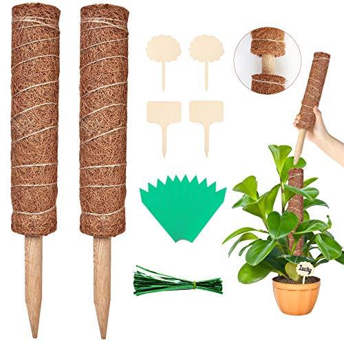 2 Pcs 40CM Palo de Tótem de Coco de Musgo para Enredaderas Soporte de Plantas Extensión Escalada Plantas con 100 corbatas giratorias, 10 etiquetas verdes, 4 etiquetas de madera para plantas