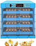 LYRONG Incubadora de Huevos Automática, Incubadora Digital con Control de Humedad y...