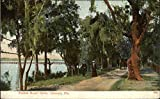 """Categories: US State & Town Views,Florida,Ormond Type: Postcard Size: 3.5"""" x 5.5"""" (9 x 14 cm) Publisher: I. Stern"""