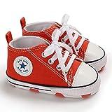 Zapatillas de Lona para Bebé Recién Nacido de 3 a 18 Meses Zapatos de Fondo...
