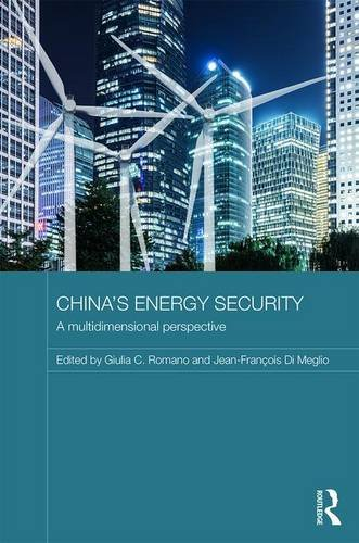 Chinas Energy Security: A Multidimensional Perspective (Routledge Contemporary China Series)