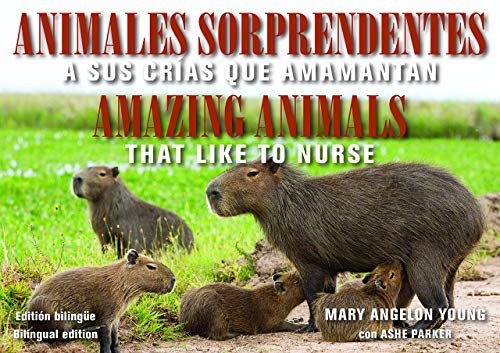 Animales Sorprendentes / Amazing Animals: Que Amamantan a Sus Crias / That Like to Nurse (Family and World Health)