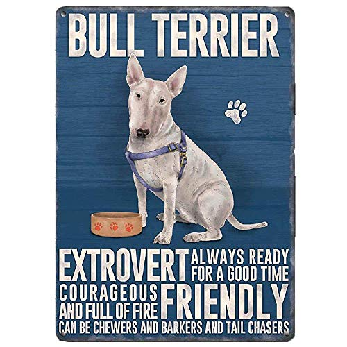 WallAdorn Blechschild Bullterrier Hund Iron Poster Malerei Blechschild Vintage Wall Decor für Cafe Bar Pub Home 8 x 12 cm