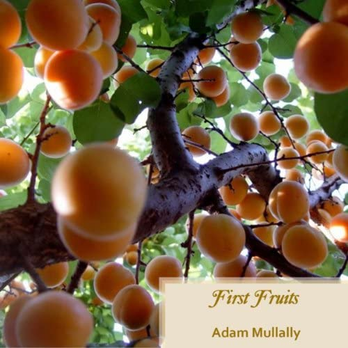 Adam Mullally