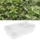 SALALIS Bandeja de Inicio de plántulas, Evitar residuos de plástico Bandejas de Cultivo Bandeja de Desarrollo para invernaderos