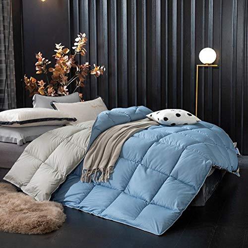 All Seasons Goose Duvet Double Duvet, Winter Duvet Double Bed, Duvet Classic Quilt - Anti-allergy - Feather and Down Alternative-sky blue_150x200cm-4kg