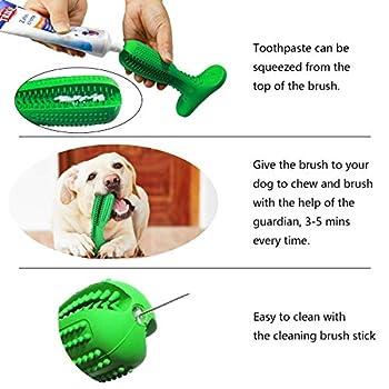 VANUODA Brosse a Dents pour Chien - Jouet Chien Mâcher - Bâton Interactif - Nettoyage Hygiène Dentaire Petit Chien - Cadeau Amoureux des Animaux (S)