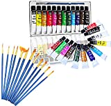 Veczom Acrylic Paint Set 12 Colors Non Toxic Vivid Painting Supplies with 12 Set Paintbrushes for Rock Painting, Canvas, Ceramic, Wood, Kids, Beginners, Students, Professional Artist