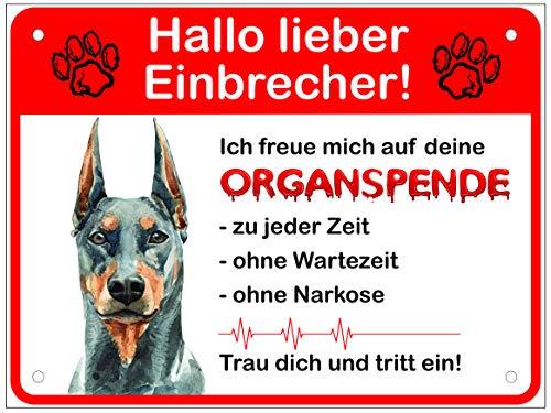 Warnung Vor Dem Hund Schilder I Dobermann Hundeschild Lustig Einbrecher Organspende Warnschild Warnung Achtung