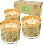 Citronella Candles Outdoor Indoor, 3 Pack 14.6 Oz Large 3 Wick Scented Jar Candles Set Aromatherapy Long Lasting Soy Wax for Summer Home Garden Patio Balcony