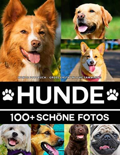 Hunde Fotobuch - Große Erstaunliche Sammlung: 100 Wunderschöne Fotos In Diesem Fantastischen Hund Buch - Tier Fotobuch Für Kinder und Erwachsene
