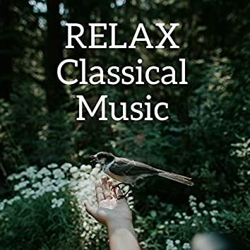 Relax Classical Music