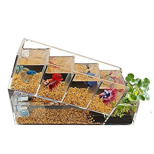 XXJIC Sucastle Mini Tanque de Peces, jardín acuático, Tanque de Peces autolimpiables Que Crece Alimentos, Mini ecosistema de Escritorio, decoración de Escritorio Que Crece Plantas