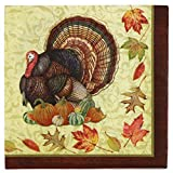Paper Disposable Thanksgiving Party Napkins, Dinner Size, Harvest Turkey, 64-Count