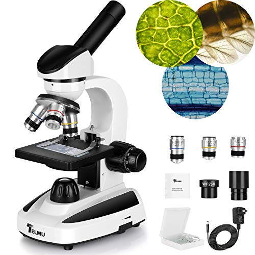 Best microscope for adults