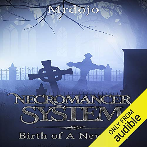 Skyhaven: Necromancer System audiobook cover art