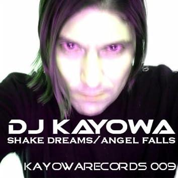 Shake Dreams