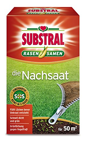 Substral Rasensamen Die Nachsaat, Rasensaat, Schnell keimende strapazierfähige Rasenreparatur-Mischung, 1 kg für 50 m²