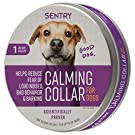 Sentry Behavior and Calming Collar for Dogs