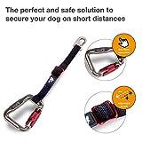 CURLI Auto-Sicherheitsgurt CAR SAFTY BELT für Hunde small – 30cm - 5