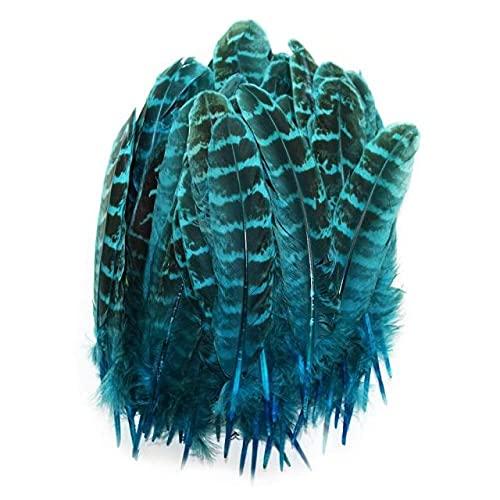 QILIN Pluma de faisán Natural para Ropa 4-6'/ 10-15CM Plumas Femeninas teñidas para Manualidades Accesorios de joyería Plumas