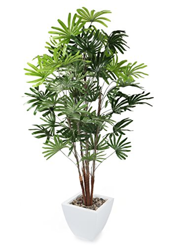 Closer to Nature Artificial 5ft Lady Palm Tree - Artificial Silk Plant and Tree Range