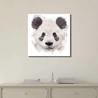 panda bears pictures color