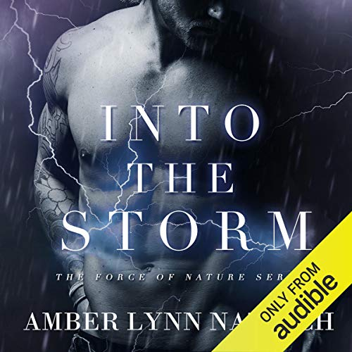 Into the Storm  By  cover art