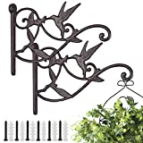 Livfodrm Plant Hangers Outdoor Plant Hooks for Wall/Fence, Hummingbird...