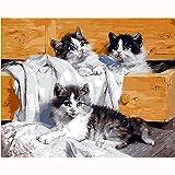 N / A ysyxin Precioso Gato DIY Animal por números Pintura en Lienzo Pintura sobre Lienzo decoración del hogar Arte de Pared Pintura a mano-40 x 50 cm(Sin Marco)