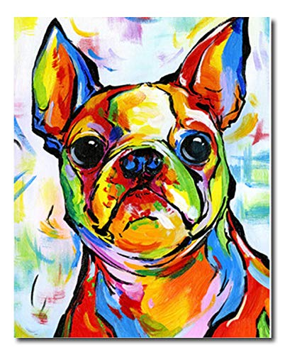 Shukqueen DIY Paint by Numbers for Adults DIY Oil Painting Kit for Kids Beginner - Bulldog 16x20 Inch (Without Frame)