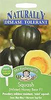 【輸入種子】 Mr.Fothergill's Seeds Naturally Disease Tolerant Collection Squash Honey Bear F1 スカッシュ(ウィンター)・ハニー・ベアー・F1 ミスター・フォザーギルズシード 期限切れ(2021年12月)間近のため売り尽くしセール!