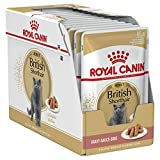 ROYAL CANIN British Shorthair Comida para Gatos - Paquete de 12 x 85 gr - Total: 1020 gr