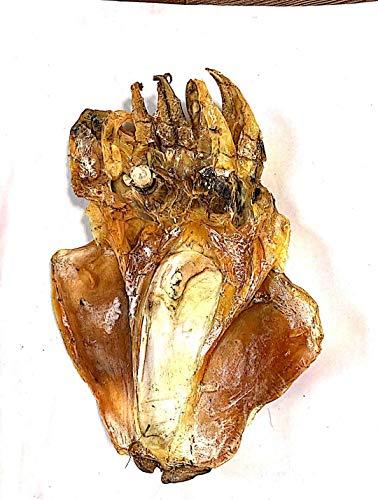 Getrockneter Tintenfisch |Dried Squid | 100% Nature (5bag/1000G)