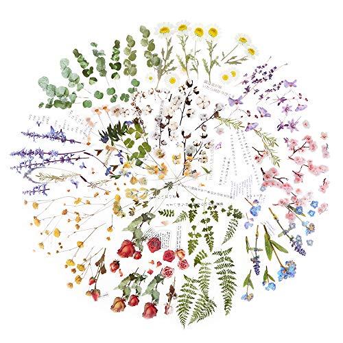 Scrapbooking Aufkleber 12 Blatt in verschiedenen Mustern Blumen Aufkleber Sticker Scrapbook Sticker Vintage Stickerbögen Blumen für Fotoalbum Kalender Notizbuch Tagebuch DIY Dekoration (Bunt A)