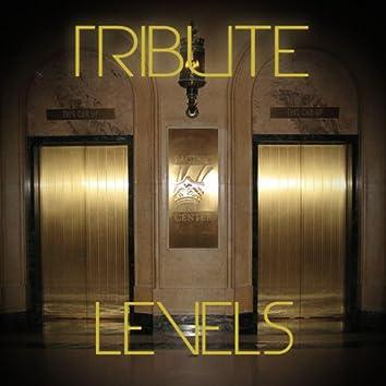 Levels (Avicii Tribute) - Single