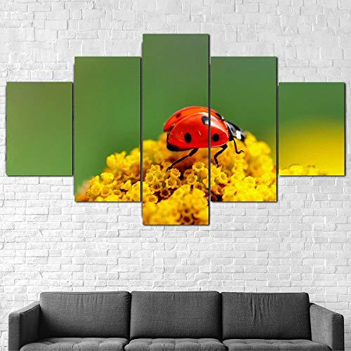 IIIUHU Cuadro en Lienzo Mariquita Escarabajo Insecto Naturaleza 150x80cm - XXL Impresión Material Tejido no Tejido Artística Imagen Gráfica Decoracion de Pared - 5 Piezas - Listo para Colgar