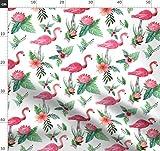 rosa, Hibiskus, Federn, Sommer, Flamingo, Flamingos,