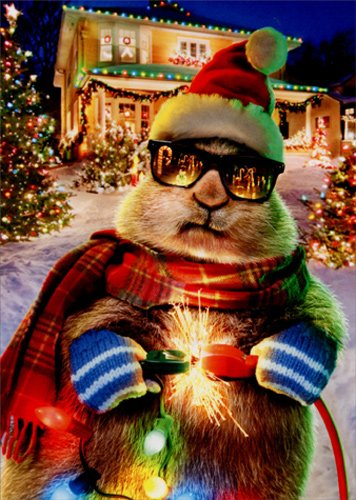Prairie Dog Christmas Lights - Avanti Funny Box of 10 Christmas Cards