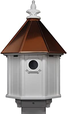 Amazon Com Nc Birdguy Bluebird Songbird Duplex Bird House With Copper Roof Made In The Usa Garden Outdoor