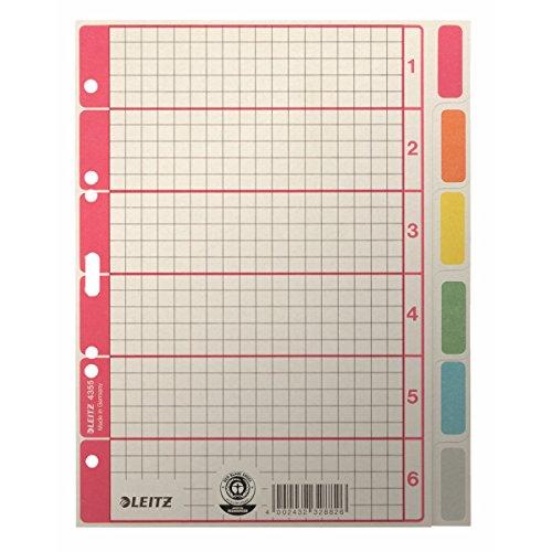 Esselte Leitz Kartonregister Blanko, A5, Karton, 6 Blatt, grau