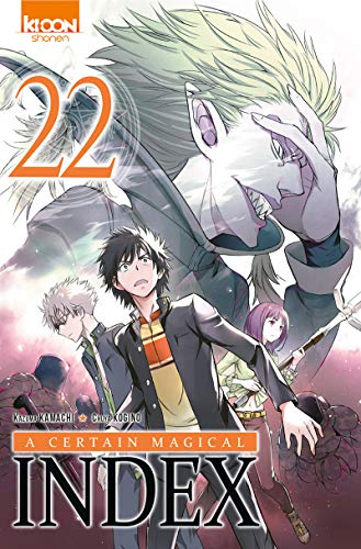 A Certain Magical Index Edition simple Tome 22